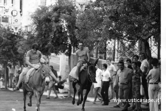cursa-di-scecchi-1-1970