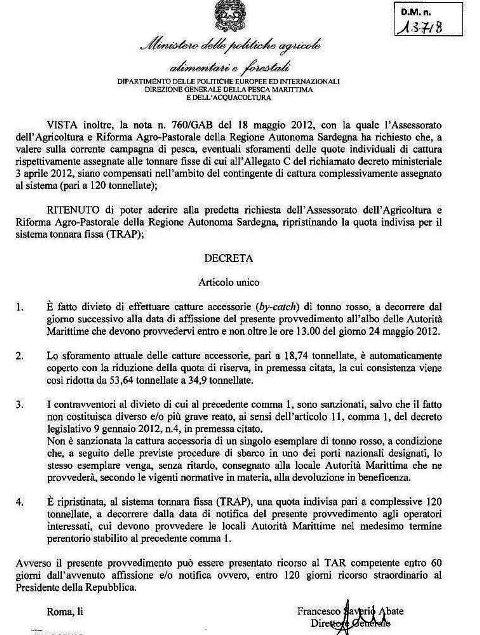 Decreto divieto catture accessorie (By-catch) tonno rosso