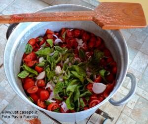 Preparazione saporitissima salsa di pomodoro di zio Giovanni Basile