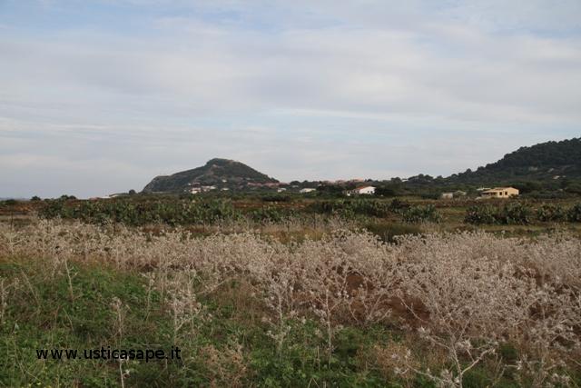 Veduta Rocca della Falconiera da zona gorgo salato