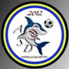 Logo Ustica Calcetto   (2)