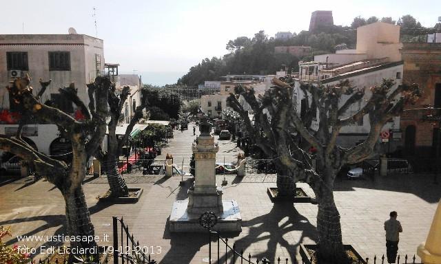 Ustica potatura ficus benjamin vista piazza dal for Ficus benjamin potatura