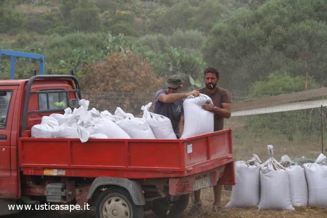 trasporto lenticchie