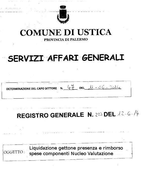 Liquidazione Gettone presenza e rimborso spese componenti Nucleo Valutazione