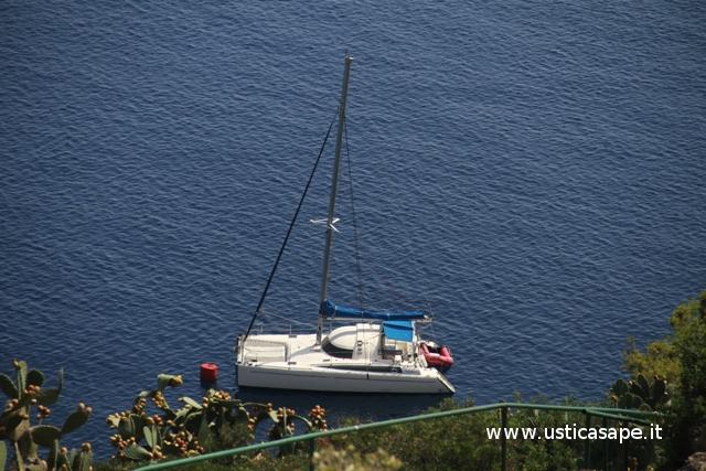 Catamarano in attesa equipaggio