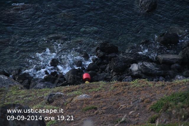Boa spiaggiata al Passo della Madonna in attesa di essere recuperata