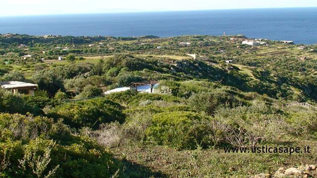 Panorama, crocevia Spalmatore