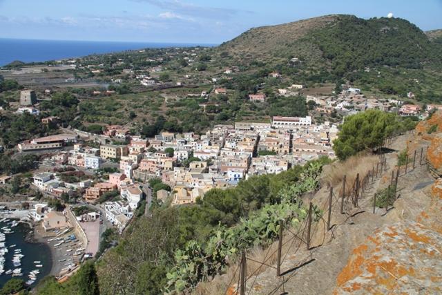 Panorama visto dalla Rocca della Falconiera