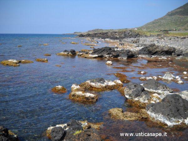 Spettacolare bassa marea