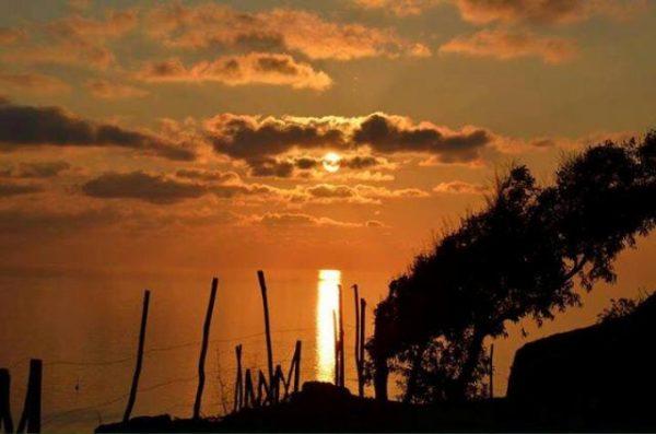 L'alba dalla Falconiera