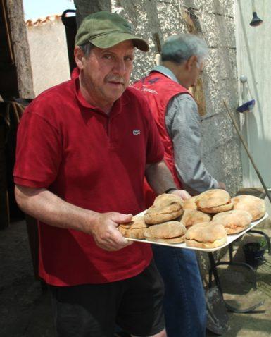 Vasteddi (panini) con tonno e pomodoro