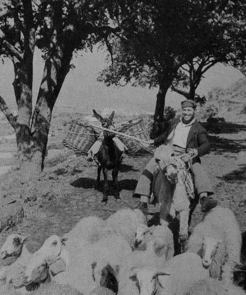 Caratteristica foto del nostro contadino