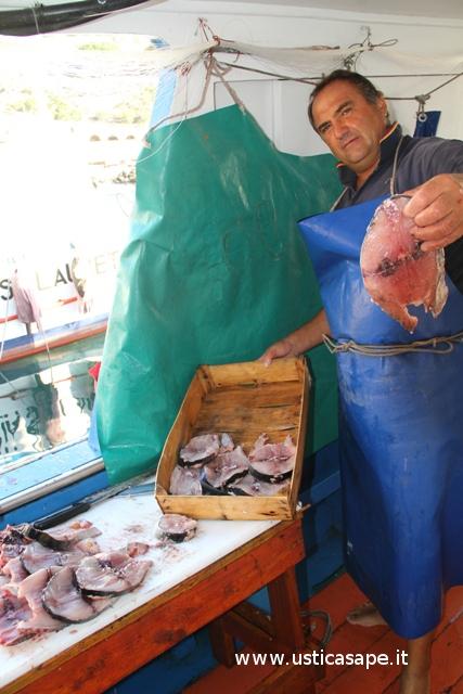 fette di pesce spada