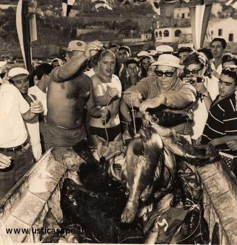 pescato, gara internazionale pesca subacquea