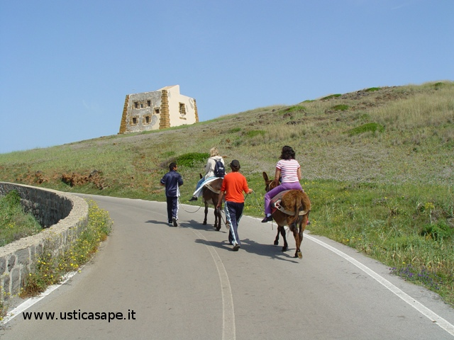 Ustica, giro dell'Isola con l'asinello