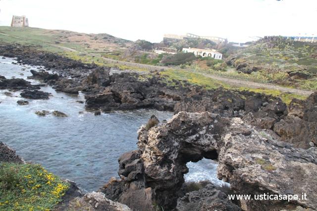 Scogliera zona Punta Spalmatore