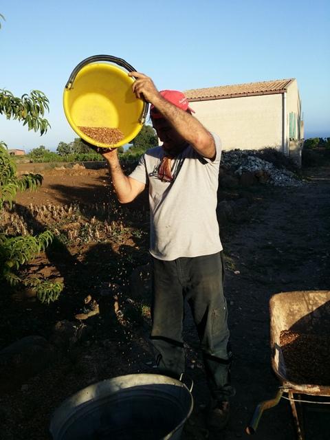 Pulire le lenticchie con il vento