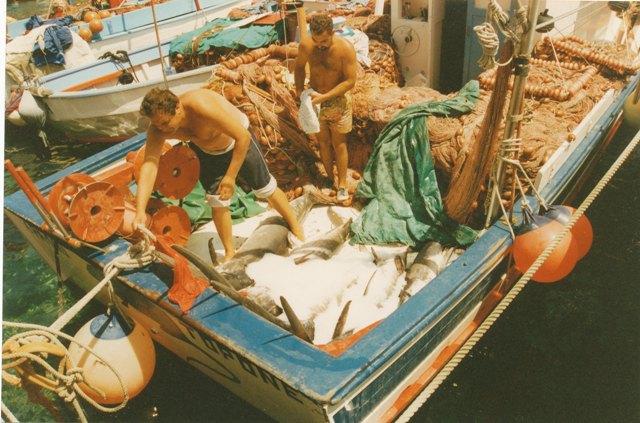 Topone Senior La barca dell'abbondanza