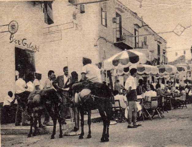 Ustica, asini taxi in piazza per turisti