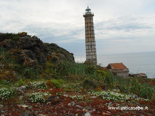 Ustica, Faro con fiori spontanei sulla scogliera