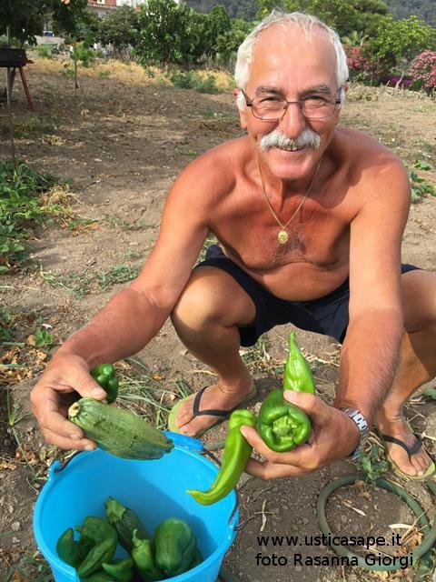Ustica, Pino Palmisano soddisfatto del  primo raccolto, zucchine e pomodoro