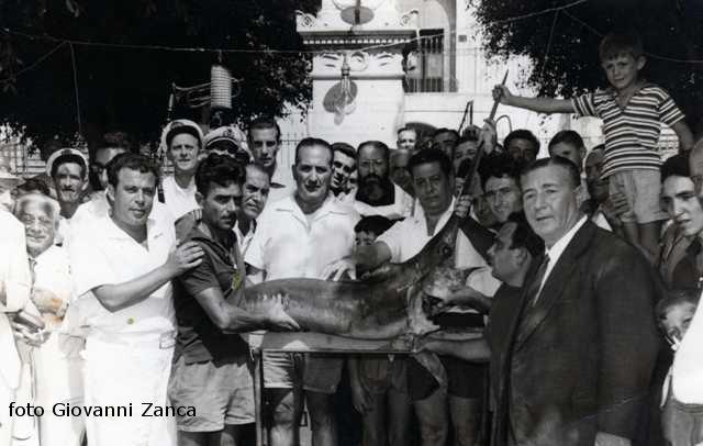 Ustica, vendita pesce spada all'asta