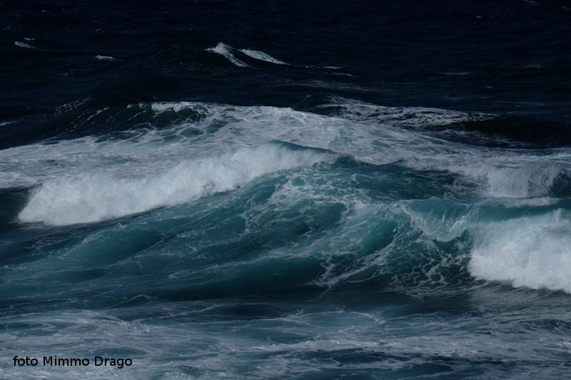 """""""L'onda viene dal fondo con radici figlie del firmamento inabissato."""" (Pablo Neruda)"""