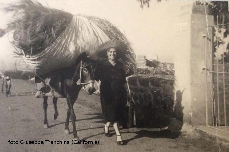 Caratteristica foto, asino che trasporta fieno accompagnato da signora con cappello e scarpe da cerimonia