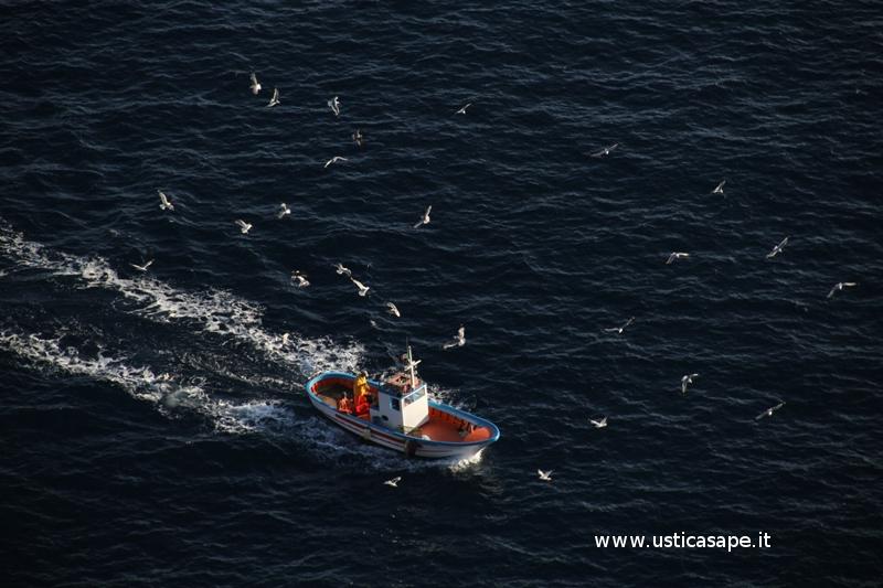 Pescatori di Ustica rientrano dopo aver tirato e riposizionato le nasse per il gambero