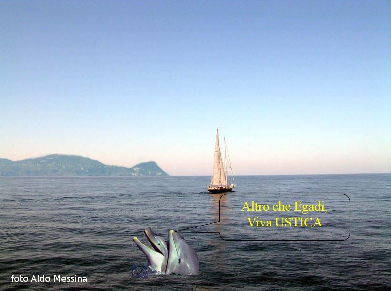 Bellissimo incontro a largo di Ustica, due delfini innamorati