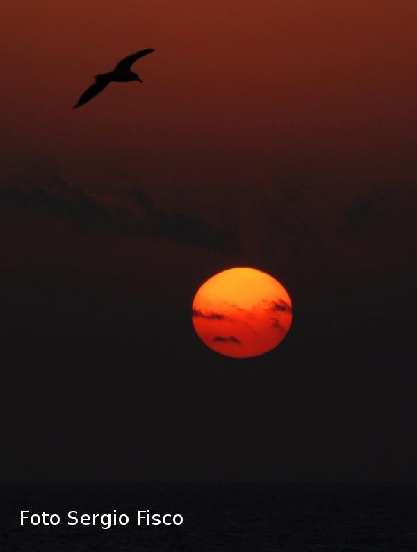 Ustica, tramonto d'agosto
