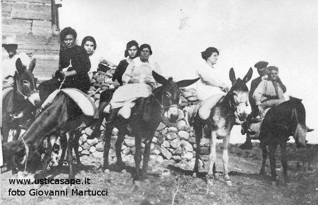 Ustica, giro dell'Isola con gli asinelli