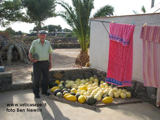 Ustica, Conservazione meloni
