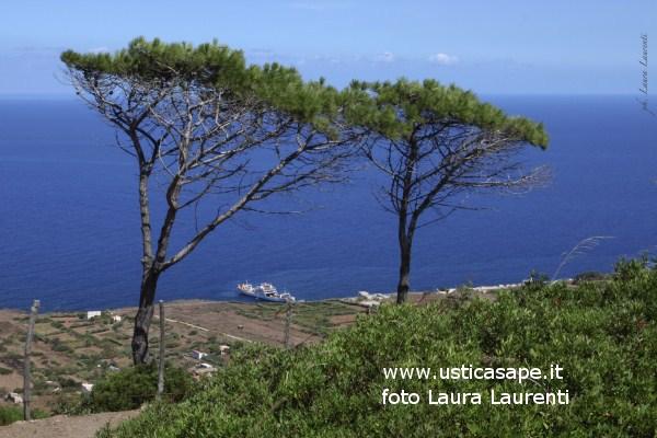 Ustica, Tramontana vista dal boschetto