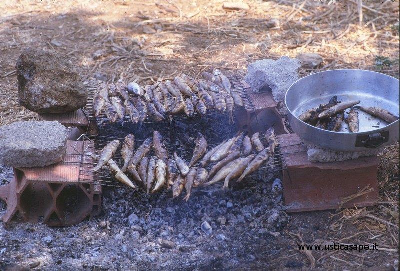 grigliata di pesci boghe in campagna
